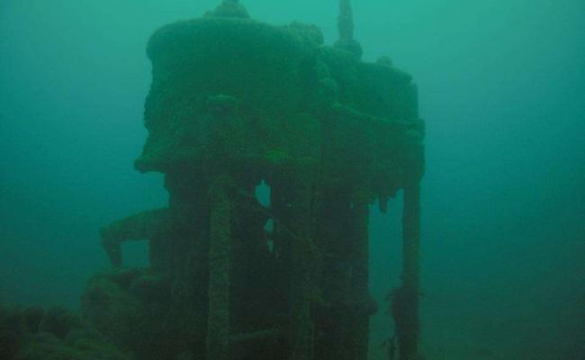 inmersión Matthew Cay